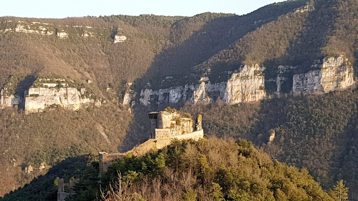 chateau a visiter aveyron